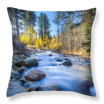 Sierra Mountain Stream Throw Pillow