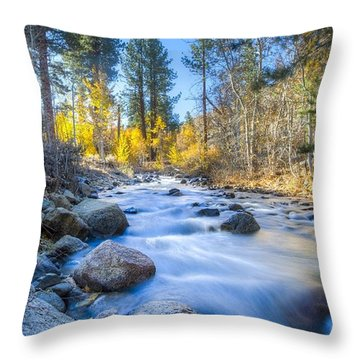 Sierra Mountain Stream Throw Pillow