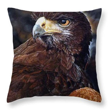 Sig The Harris Hawk Throw Pillow