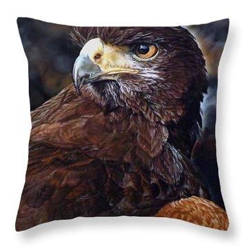 Sig The Harris Hawk Throw Pillow by Linda Becker