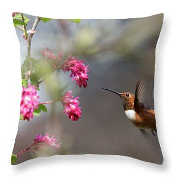 Sign Of Spring 3 Throw Pillow by Randy Hall