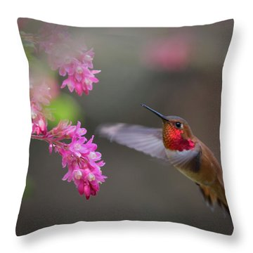 Sign Of Spring Throw Pillow by Randy Hall