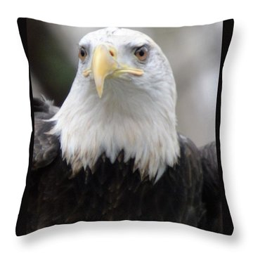 Sign Of Strength Throw Pillow