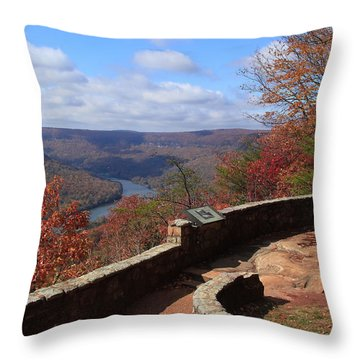 Signal Point Throw Pillow