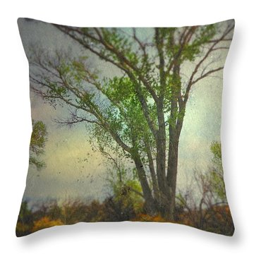 Throw Pillow featuring the photograph Signs  by Mark Ross
