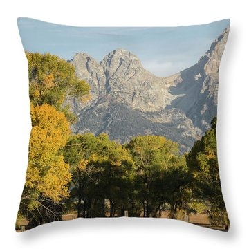 Throw Pillow featuring the photograph Signs Of Autum by Colleen Coccia