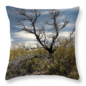 Throw Pillow featuring the photograph Signs Of Life After The Fire by Joe Kozlowski