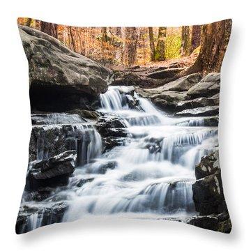Autumn At Moss Rock Preserve Throw Pillow