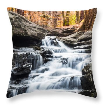 Autumn At Moss Rock Preserve Throw Pillow