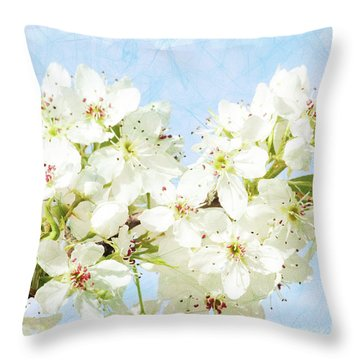 Signs Of Spring Throw Pillow by Inspirational Photo Creations Audrey Woods