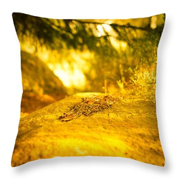 Silence And Peace Under The Spruce Trees Throw Pillow