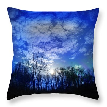 Silence Throw Pillow by Bernd Hau