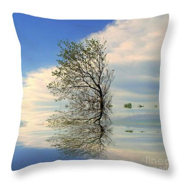 Silence Throw Pillow by Elfriede Fulda