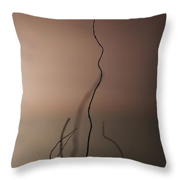 Silence Throw Pillow by Evelina Kremsdorf