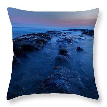 Throw Pillow featuring the photograph Silence by Evgeny Vasenev