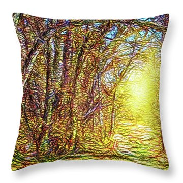 Silence Of A Forest Path Throw Pillow by Joel Bruce Wallach