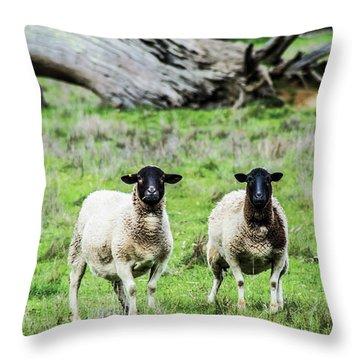 Silence Of The Umm Sheep 2  Throw Pillow