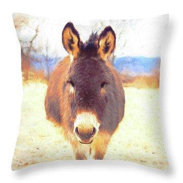 Silent Approach Throw Pillow