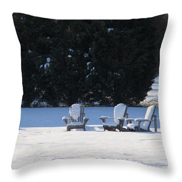 Throw Pillow featuring the photograph Silent Conversation by Charles Kraus