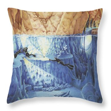 Silent Echoes Throw Pillow by Amy S Turner