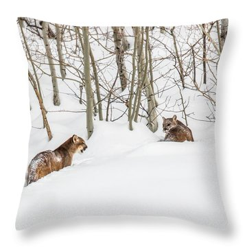Silent Exit  Throw Pillow