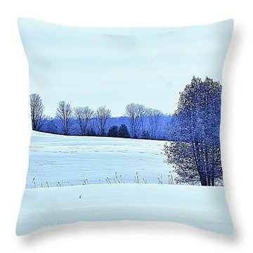 Throw Pillow featuring the photograph Silent Fields by Al Fritz