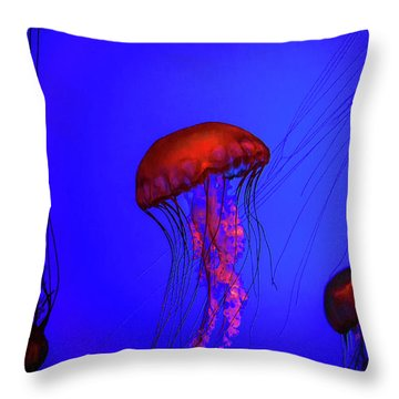 Throw Pillow featuring the photograph Silent Jellies by Jeff Folger