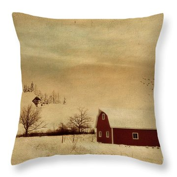 Throw Pillow featuring the photograph Silent Morning by Chris Armytage
