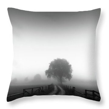 Silent Morning  Throw Pillow