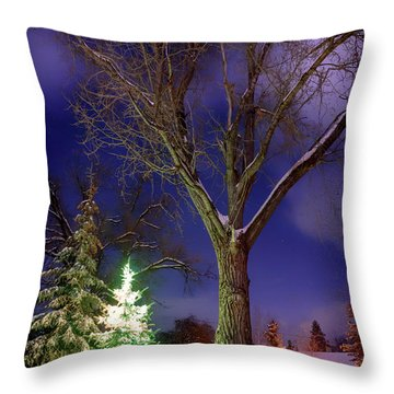 Throw Pillow featuring the photograph Silent Night by Cat Connor