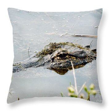 Silent Predator Throw Pillow