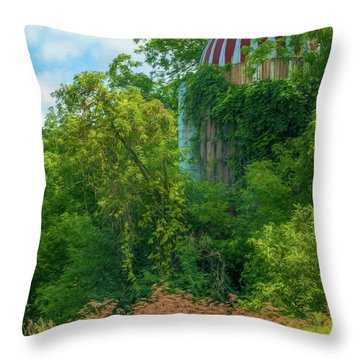 Silent Silo On Nottleson Road Throw Pillow by Trey Foerster