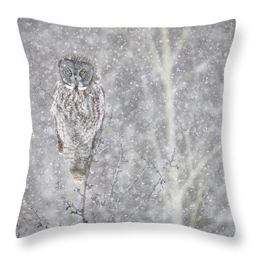 Throw Pillow featuring the photograph Silent Snowfall Landscape by Everet Regal
