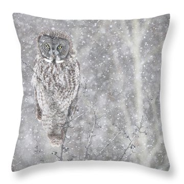 Throw Pillow featuring the photograph Silent Snowfall Portrait by Everet Regal