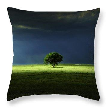 Silent Solitude Throw Pillow