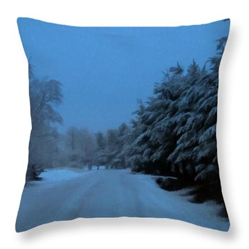 Throw Pillow featuring the photograph Silent Winter Night  by David Dehner
