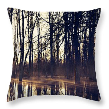 Silent Woods #4 Throw Pillow