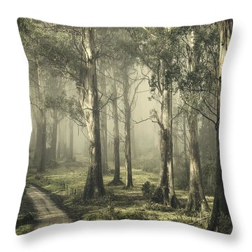 Silently Still Throw Pillow by Andrew Paranavitana