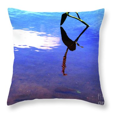 Silhouette Aquatic Fish Throw Pillow