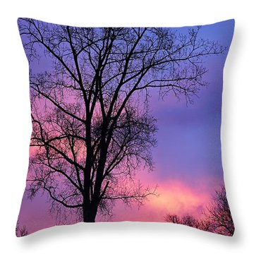 Throw Pillow featuring the photograph Silhouette At Dawn by Larry Ricker