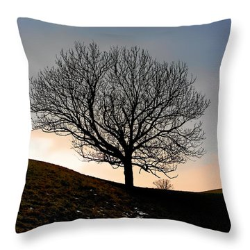 Silhouette Of A Tree On A Winter Day Throw Pillow by Christine Till