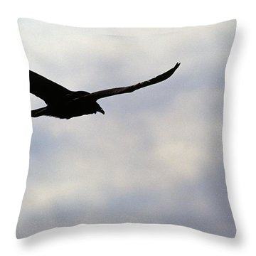 Silhouette Of A Turkey Vulture  Throw Pillow by Erin Paul Donovan