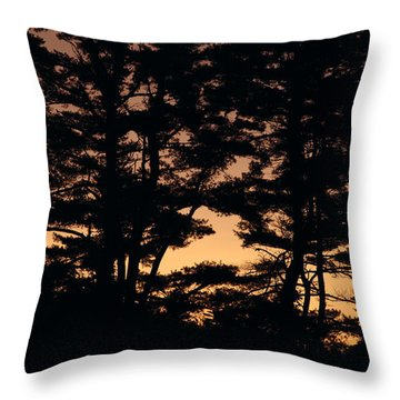 Silhouette Of Forest  Throw Pillow by Erin Paul Donovan