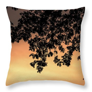 Silhouette Tree In The Dawn Sky Throw Pillow