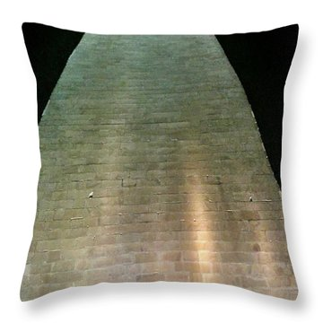 Silhouette Washington Memorial Throw Pillow by Lorella Schoales