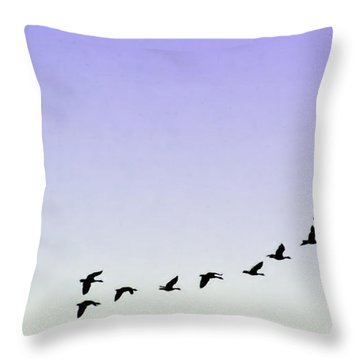 Silhouetted Flight Throw Pillow by Brian Wallace