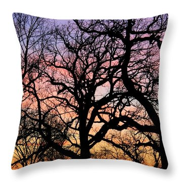 Throw Pillow featuring the photograph Silhouettes At Sunset by Chris Berry