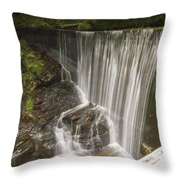 Silk Cascade Throw Pillow