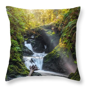 Silk Steps Throw Pillow by James Heckt
