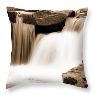 Silken Waters Throw Pillow by Tamyra Ayles